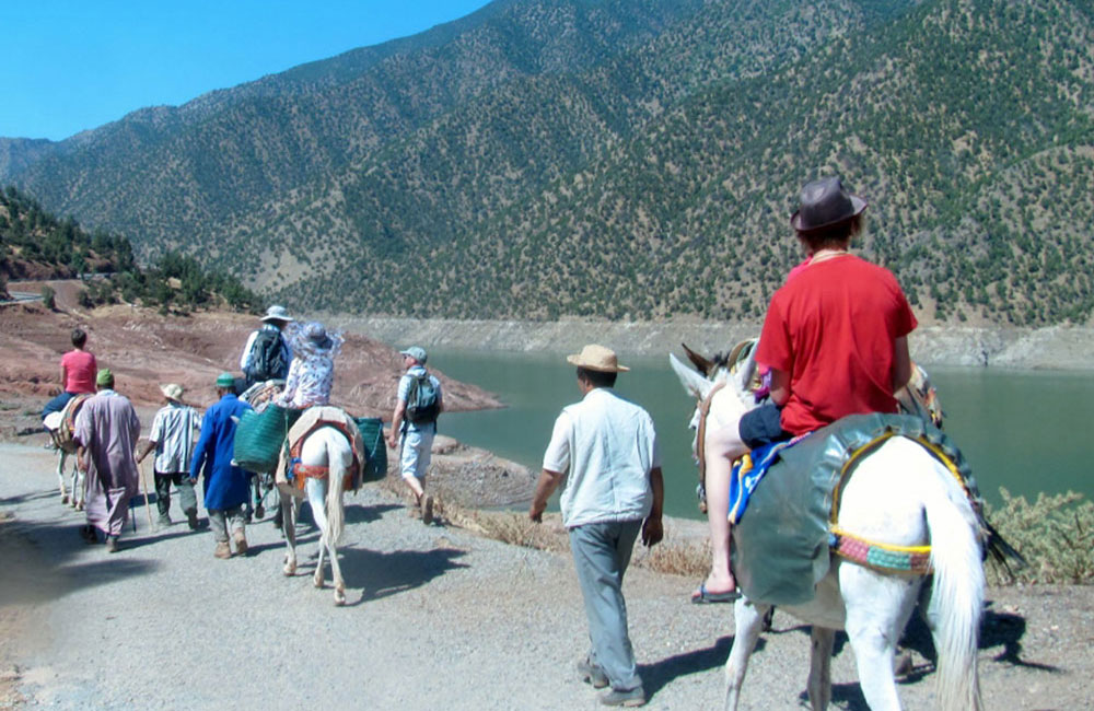 Day-Excursions-Mule-trek-in-Atlas-to-Ouirgane-Valley